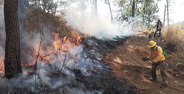 Toman precauciones por incendios en Morelos