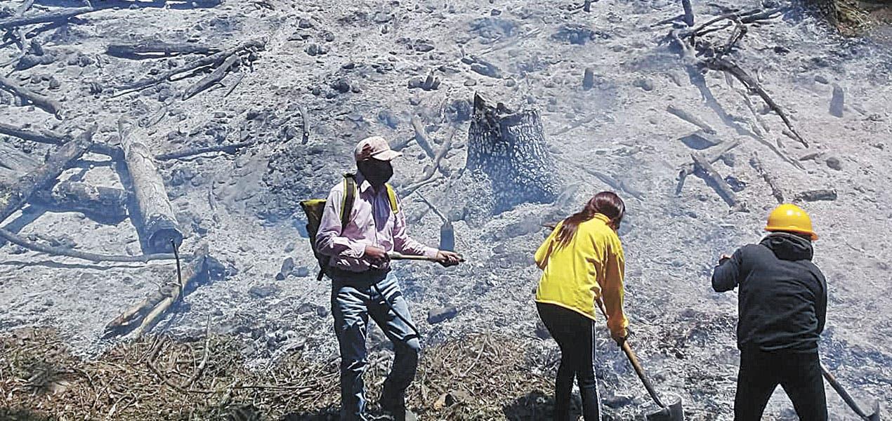 Liquidan incendio en paraje La Gloria, de Huitzilac