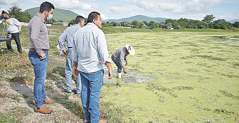 Liberan crías de tilapia en Coatlán del Río