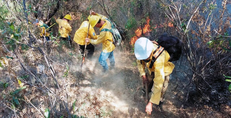 Quemas. Llaman a agricultores a evitar prender fuego a sus terrenos