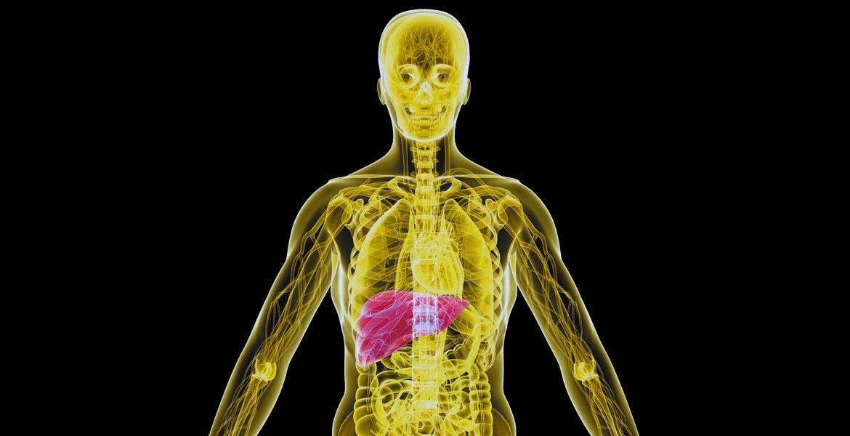 Las hepatitis son un grupo de enfermedades caracterizadas por producir inflamación del hígado.