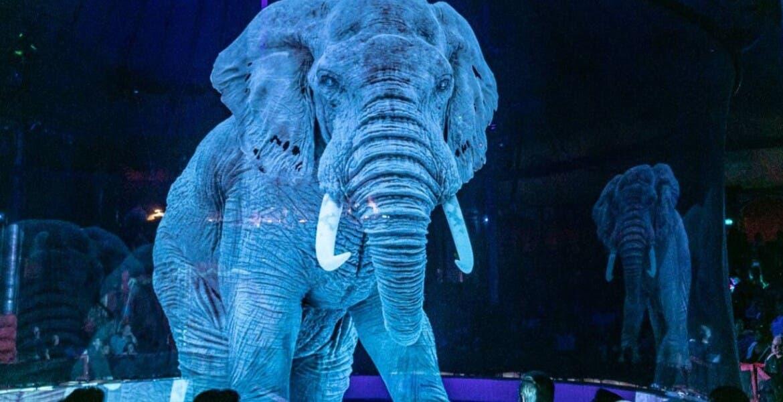Usan hologramas de animales salvajes en circo alemán