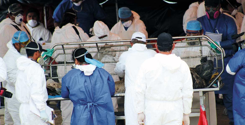 Trabajos. Uno de los 119 cadáveres que fueron exhumanos de las fosas de Tetelcingo y reinhumados en las gavetas del panteón Jardines del Recuerdo, será entregado hoy en la mañana a sus familiares, tras la idenfiticación a través de la confronta genética.