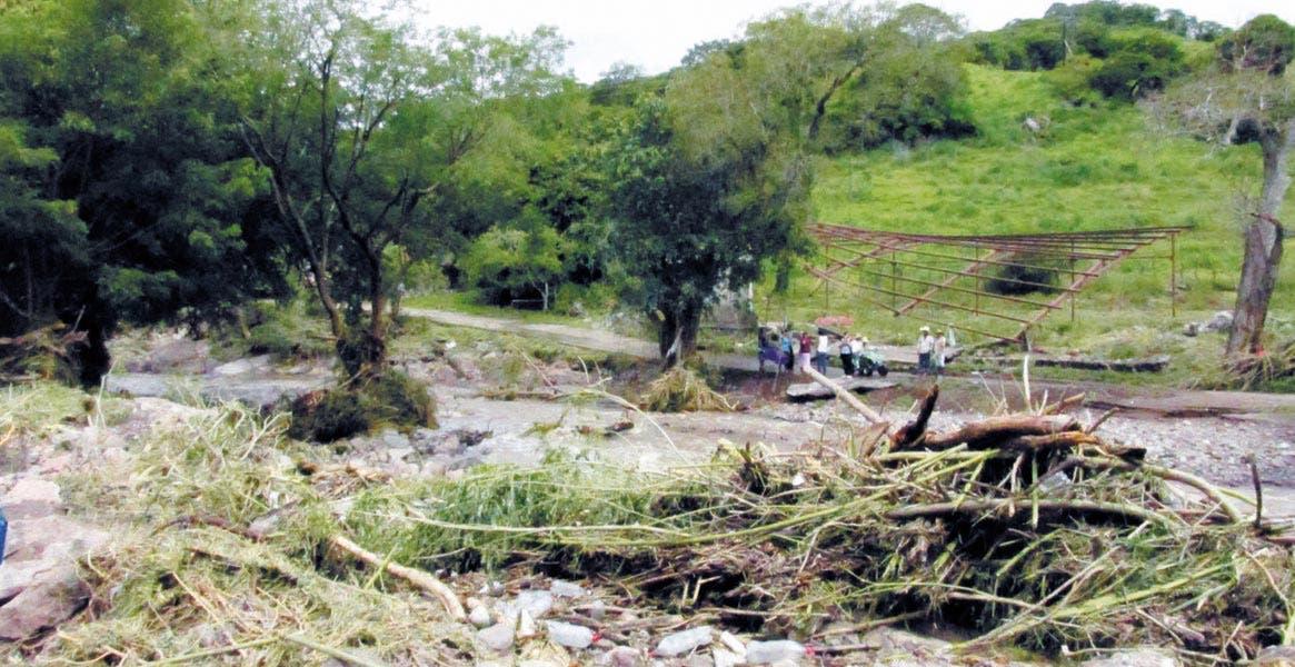 Estragos. Mínimos han sido los daños derivados de la lluvia en el campo; los reportes de afectaciones mayores se han presentado en el sur de la entidad morelense