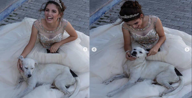 """Perrito callejero se """"coló"""" en la fotos de esta feliz quinceañera"""