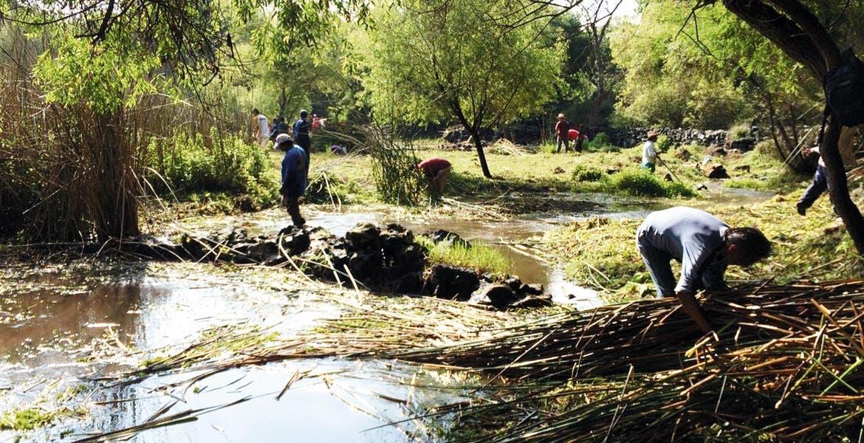 Participación. Hicieron la tarea voluntarios entre los comuneros de Tejalpa, Ayuntamiento de Jiutepec y los sistemas de agua de Jiutepec y Yautepec.