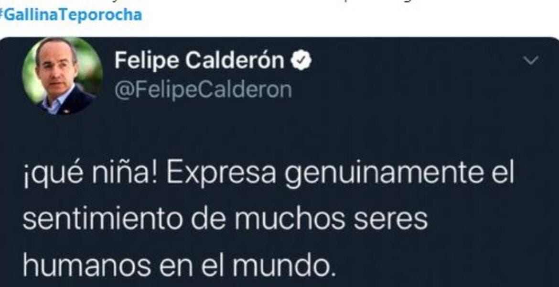Tunden en redes a Calderón por borrar tuit en contra de Trump, le llaman #GallinaTeporocha
