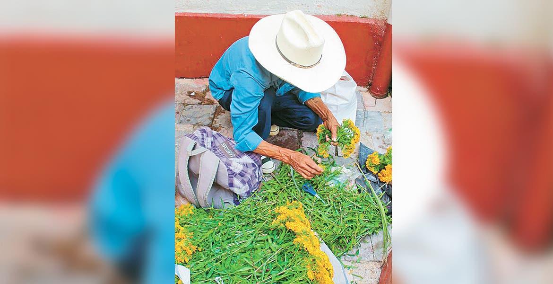 Listas las cruces de flor de pericón en Cuernavaca