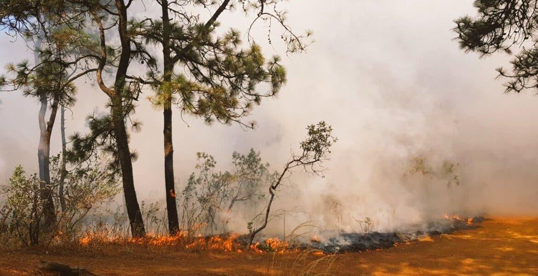 Atienden 6 incendios en Cuernavaca