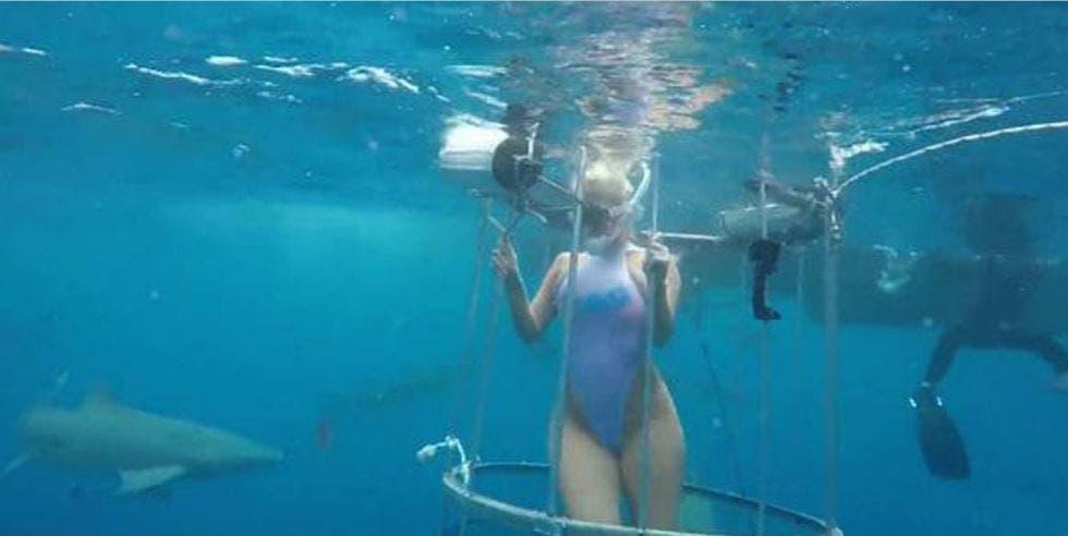 Actriz porno fue atacada por un tiburón durante grabación — Youtube