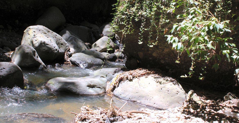 Problema ambiental. Las descargas de aguas residuales hacia las barrancas que forman parte de la cuenca del río Apatlaco son uno de los principales factores de contaminación, situación que busca remediarse.