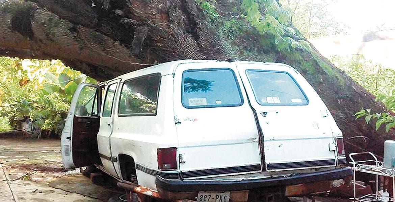 Incidente. Una camioneta fue aplastada por un árbol que colapsó en una casa de San José Vista Hermosa, en Puente de Ixtla.