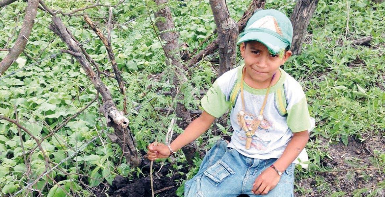 Campaña. Tocó el turno en Amacuzac de realizar labores de reforestación.