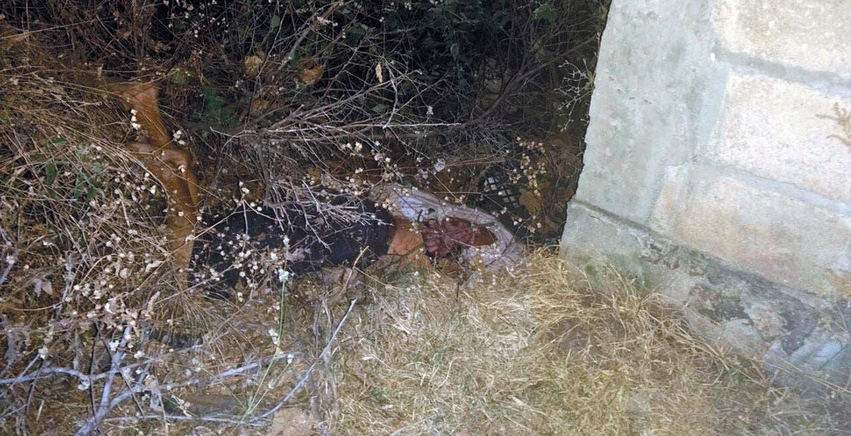 Cadáver. Un hombre asfixiado, maniatado y amordazado fue hallado entre la hierba, junto a la barda de una casa.