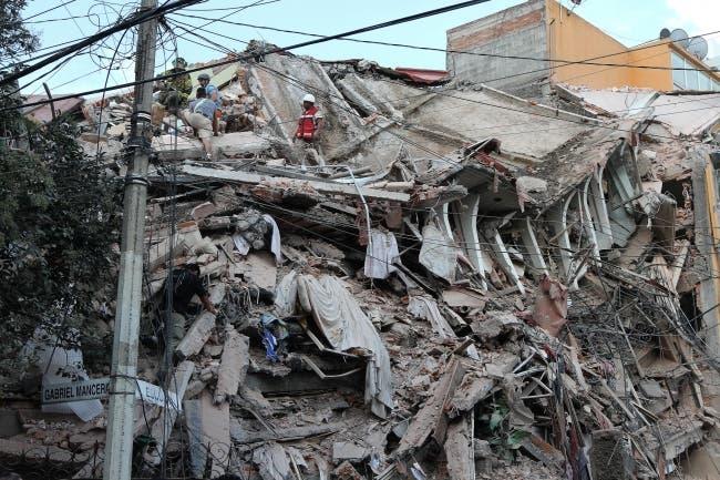 Logran rescatar un perro atrapado entre los escombros — México