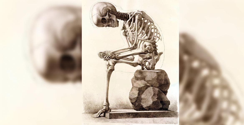 Si usted tiene factores de riesgo, se recomienda que solicite un control de salud ósea (densitometría) y realice los cambios necesarios en su estilo de vida.