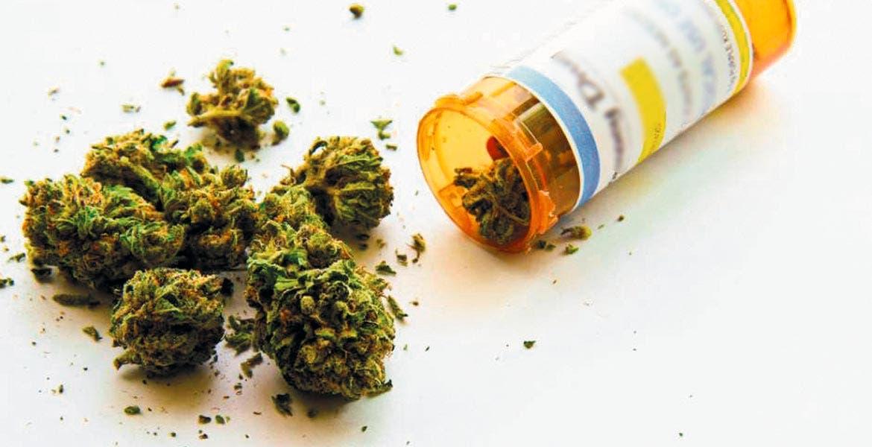 La siembra, cultivo o coseha de plantas de marihuana no serápunible cuando estas actividades se lleven a cabo con fines médicos y científicos.