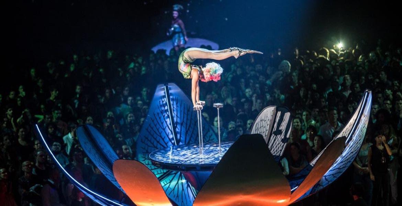 Cirque du Soleil confirma nuevas fechas para reanudar sus espectáculos