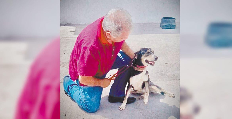 Fomenta Ayuntamiento de Cuernavaca programa de adopción de animales