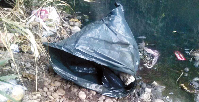Diligencias. El cadáver de un hombre descuartizado fue hallado embolsado flotando en un canal de aguas negras, en la colonia Azteca, de Temixco.
