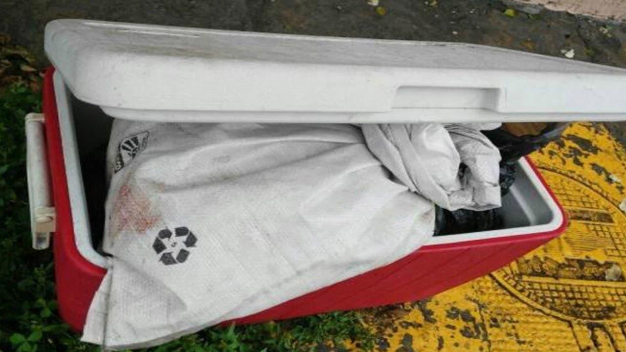 Hallan 14 cuerpos en fosa clandestina de BCS