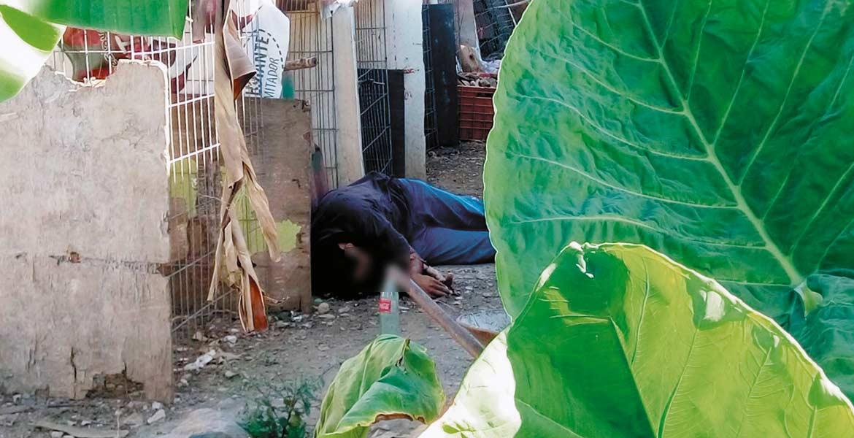 Homicidio. Un gallero fue ultimado de siete balazos al ser emboscado por varios sujetos armados, mientras les daba de comer a sus animales en el patio de su casa.