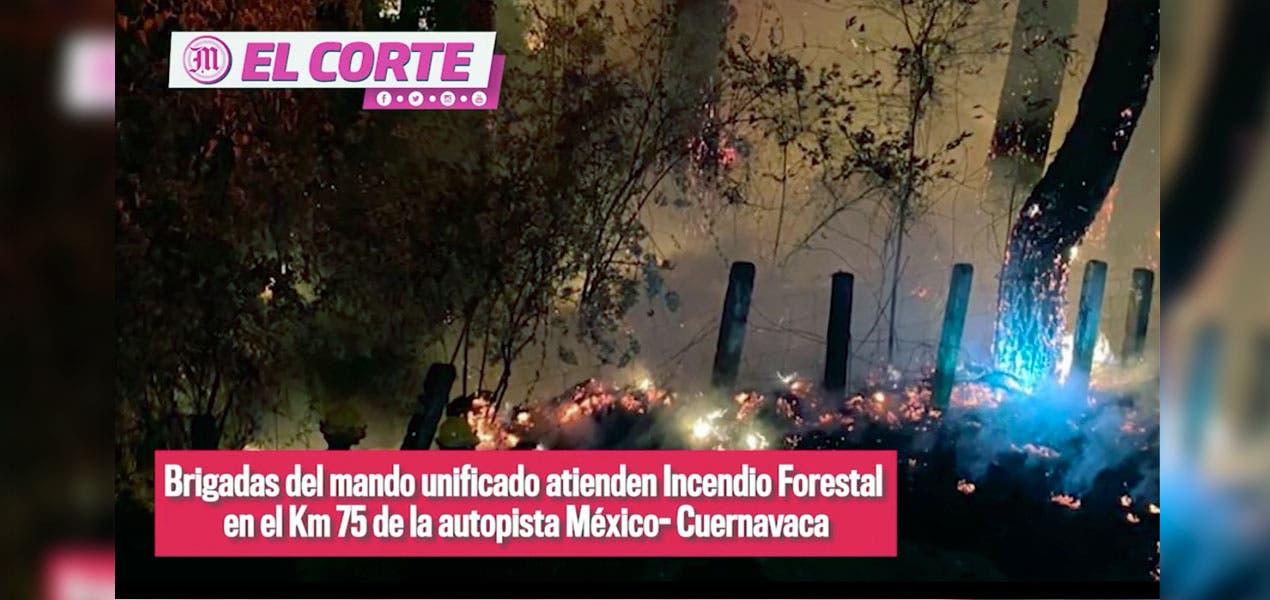 EL CORTE/ LA INFORMACIÓN MÁS IMPORTANTE DE MORELOS