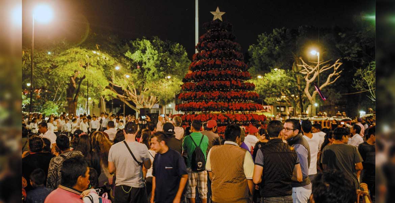 Evento. Familias de la capital y turistas abarrotaron la Plaza de Armas para el encendido del arbolito, compuesto por noche buenas.