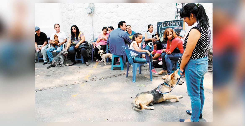 Otra. Invita la Procuraduría de Protecció al Medio Ambiente para la próxima jornada de esterilizació de mascotas.