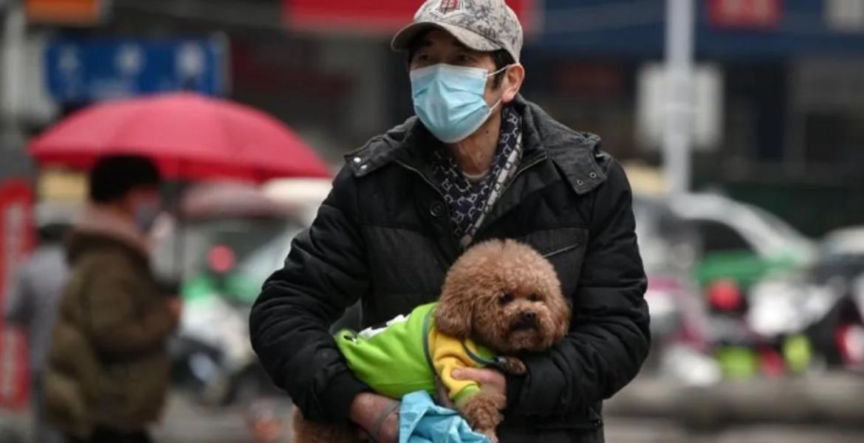 ¿Pueden personas transmitir el coronavirus a mascotas?