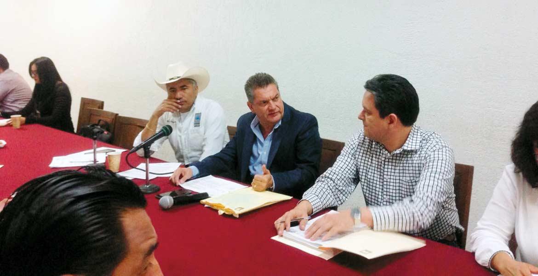 Disposición. El diputado Enrique Laffitte indicó que la minuta fue aprobada luego de que el presidente Enrique Peña Nieto presentara la iniciativa de reforma.
