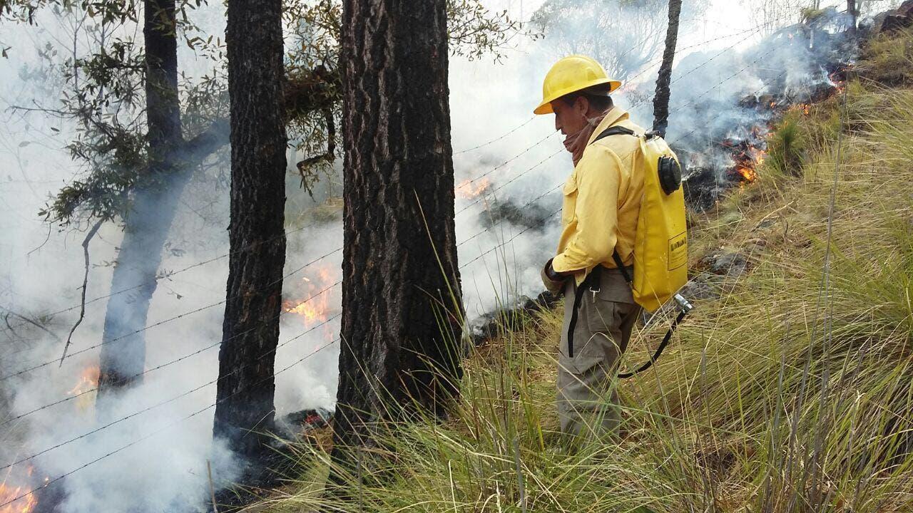 Tepoztlán, Huitzilac y Cuernavaca, los más afectados por incendios forestales