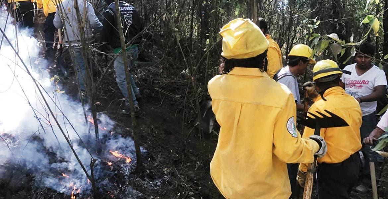 Labor. Brigadistas de la Secretaría de Desarrollo Sustentable (SDS) y la Comisión Nacional Forestal (Conafor) trabajaron arduamente durante varias horas, para sofocar el incendio en la zona boscosa de Chamilpa.