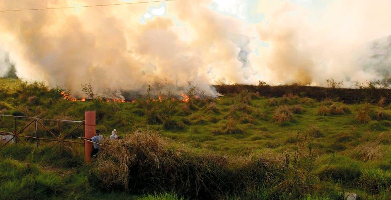 Combate. Elementos de Protección Civil y personal de Capufe luchó para apagar el incendio que pudo haber sido provocado.