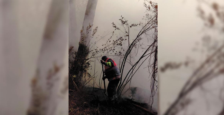 No pararon. Durante la noche los brigadistas no cesaron de lanzar agua de las pipas para controlar las llamas y sofocarlas ya de mañana.