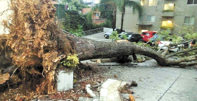 Deja daños en Cuernavaca breve lluvia intensa
