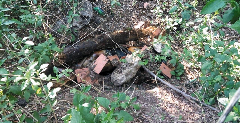 El cadáver jLa mujer vestía blusa negra, pesquero gris y calcetines rosa.
