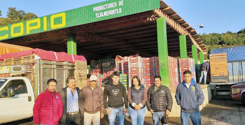 Productores de nopal piden apoyo para ampliar centro de acopio