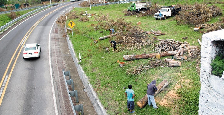 Limpieza. Empezaron nuevamente los trabajos, que en los próximos días tomarán su ritmo para ampliar a cuatro carriles el tramo Oacalco-Tepoztlán