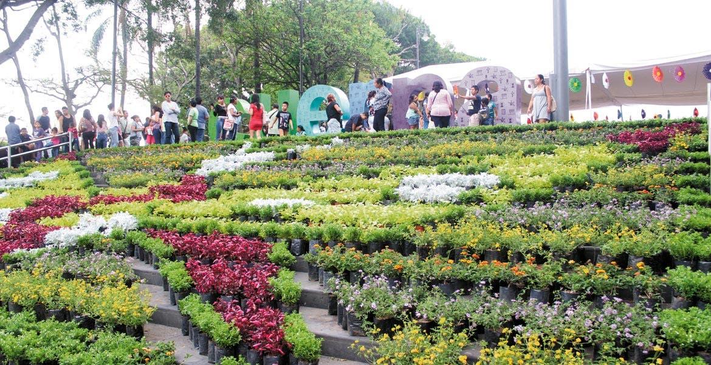 Satisface. El tapete floral es uno de los atractivos del Festival. Otros son los espectáculos y talleres
