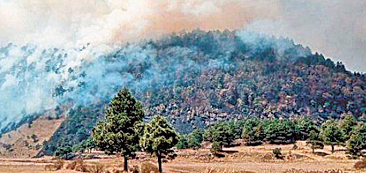 No dan tregua incendios a brigadas SDS en Morelos