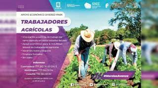 Impulsan desarrollo económico y laboral en el agro 2