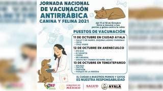 Llevarán jornada de vacuna antirrábica a Ayala 2
