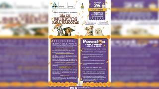 Habrá concurso de mascotas en Jojutla para Día de Muertos 2