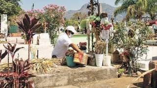 Descacharrizan panteón municipal en Tepoztlán para evitar criaderos del mosco del dengue 2