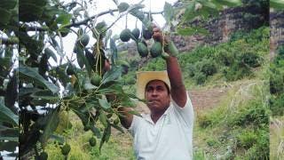 Inicia credencialización de productores del campo 2