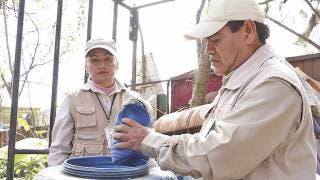 Llaman a reforzar medidas en casa contra el mosco del dengue 2