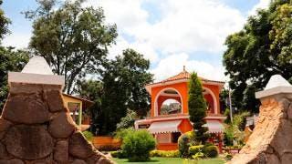 Conoce Morelos: Santa María Ahuacatitlán y el Bosque de los hongos azules 2
