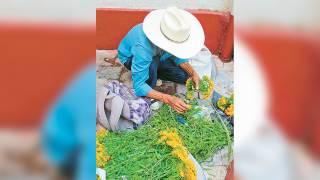 Listas las cruces de la flor de pericón en Cuernavaca 2