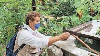 Refuerza SSM combate al dengue en Morelos 2